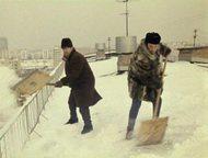 Уборка и вывоз снега в Артеме Уборка снега.   Очистка льда  Уборка территории.   Вывоз Снега   Вывоз мусора  Грузовик 4wd 3 тонн 9 м\куб -1300руб -цен, Артем - Транспорт (грузоперевозки)