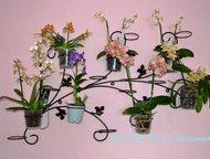 Подставки для Ваших цветочков Подставка идеально подходит для большого количества орхидей.   Изготовлена из кованных элементов, прут имеет рельефный р, Казань - Другие предметы интерьера