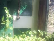 продам сад в СНТ Красная горнячка Садовый участок 6. 2 соток земли. дом кирпичный. двери обиты металлическим листом. На трех окнах установлены решетки, Копейск - Сады