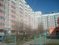 Красноярск: Сдам 1-комн, на ул, Калинина, 17, Собственник Сдам 1 комн. квартиру Калинина, 17. Собственник.   Квартира светлая, уютная, красивый вид из окон, больш
