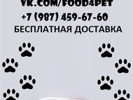 Корма для кошек и собак с бесплатной доставкой У нас Вы можете заказать влажные и сухие корма торговых марок Royal Canin, Acana и Purina., Тольятти - Корм для животных